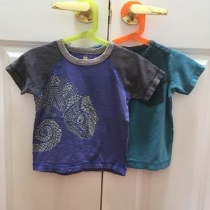 Tea Collection Tee Shirt Iguana Bundle Lot 2T